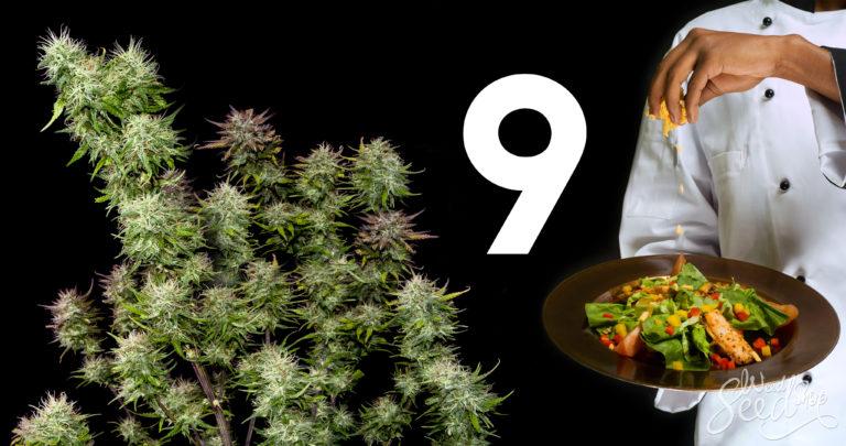Les 9 plus grands cuisiniers cannabiques