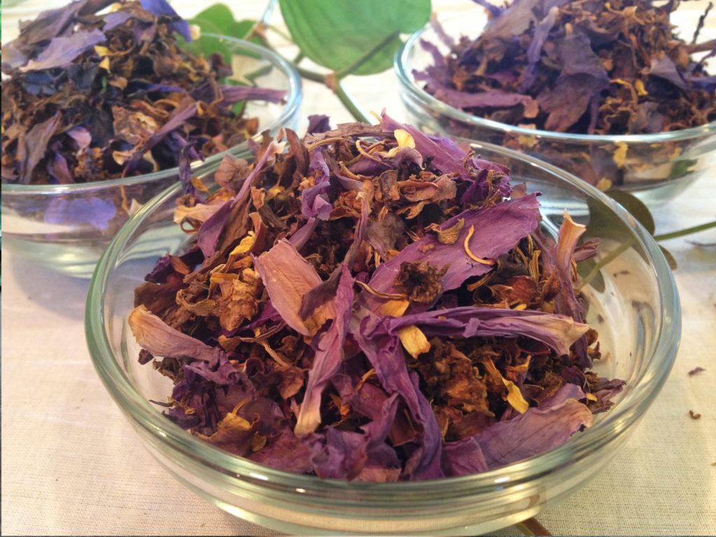 Pflanzliche Alternativen für deinen Joint– Weed Seed Shop
