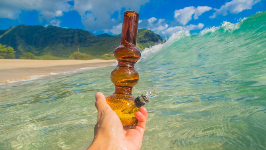 Los diferentes métodos de fumado - ¿cambia el efecto? – WeedSeedShop