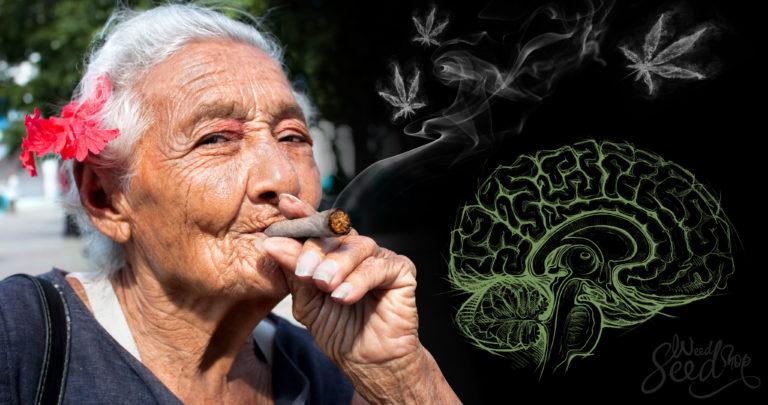 Kan Parkinson Behandeld Worden met Medicinale Wiet?