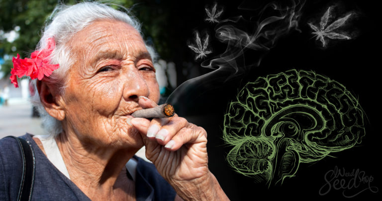 Can Medical Marijuana Treat Parkinson's Disease?