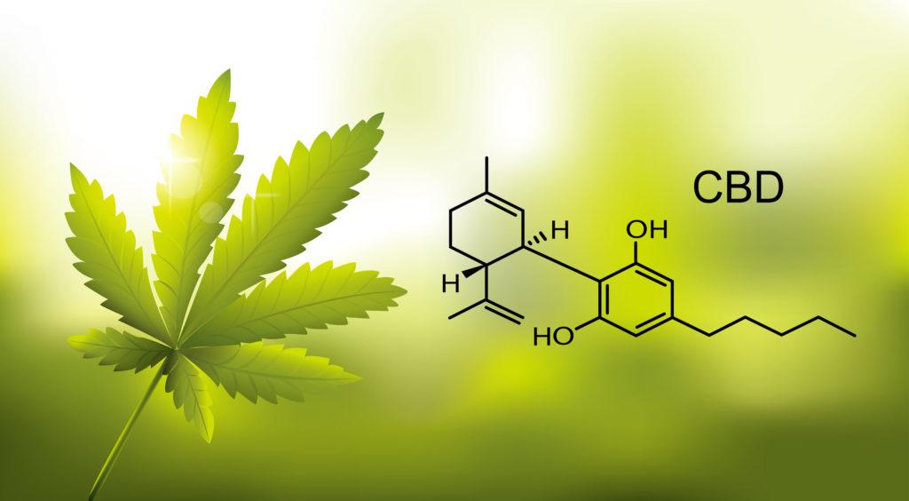 Wie kann Cannabis Endometriose behandeln? - WeedSeedShop