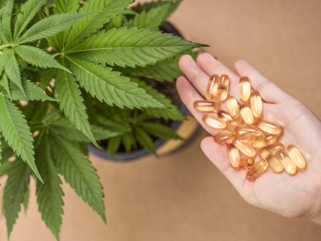 Cómo hacer tus propias cápsulas de cannabis