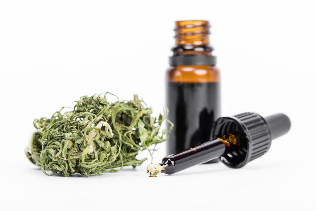 Kenn dich aus: Hanföl vs. Cannabisöl - WeedSeedShop Blog