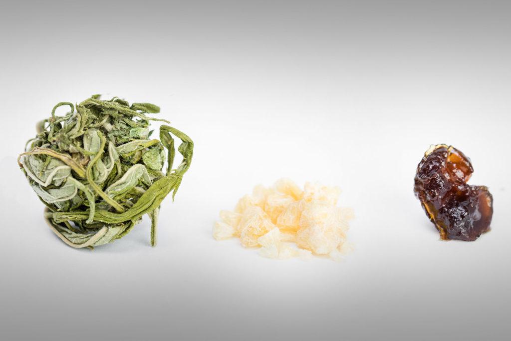 Vaporizadores parte 3: Cómo elegir el vaporizador correcto - Weed Seed Shop Blog