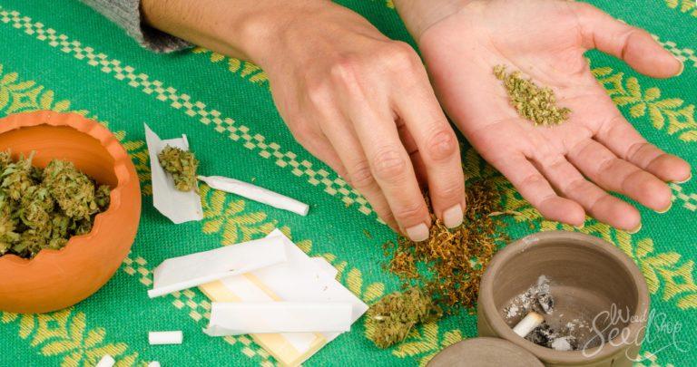 Des herbes pour remplacer le tabac dans les joints