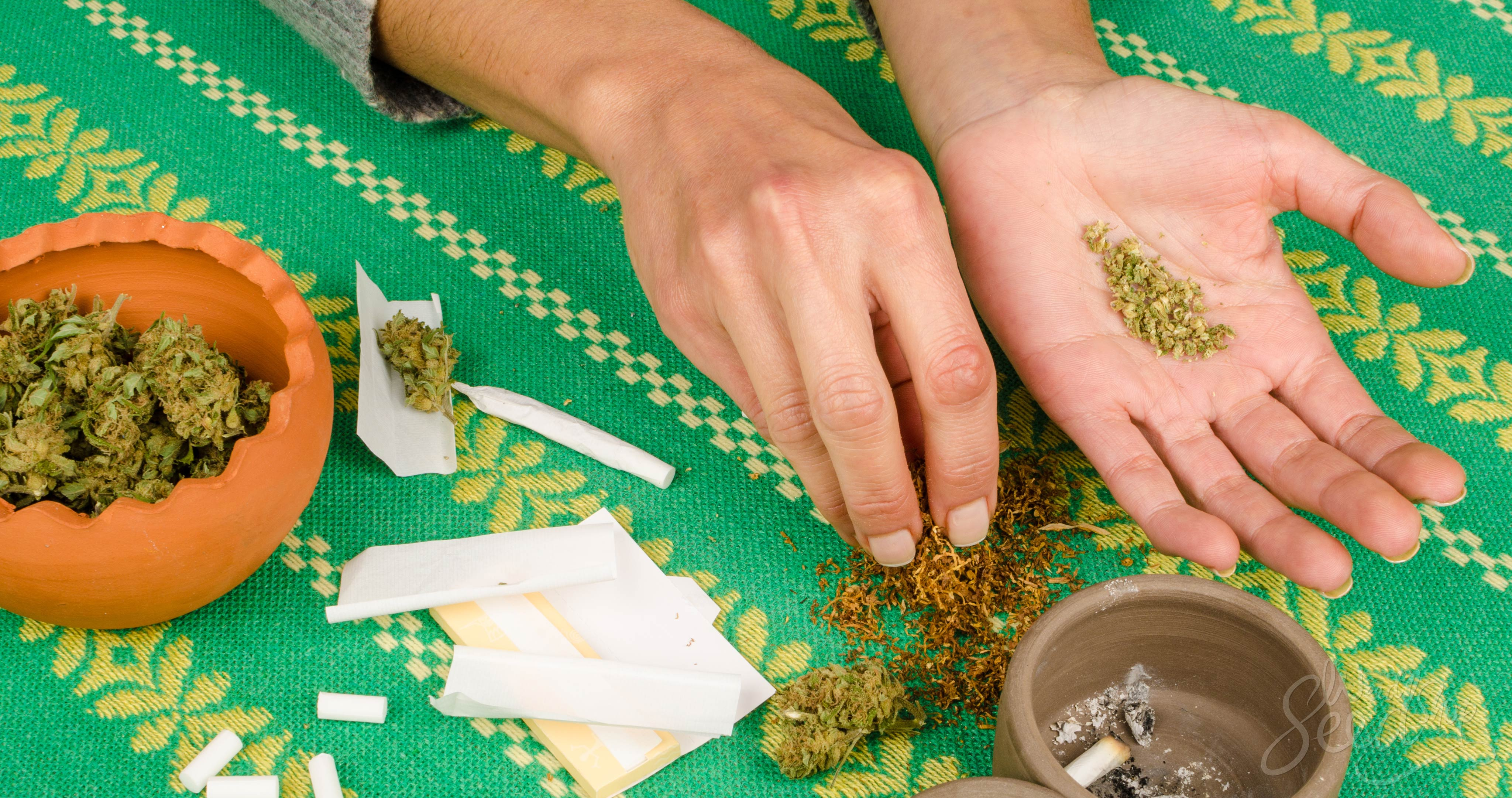 How Stoners Around the World Roll Joints - Weed Seed Shop Blog
