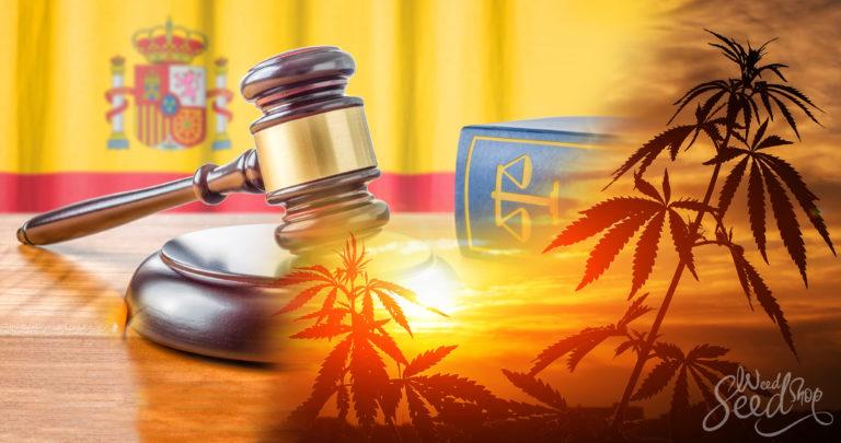 Ist Cannabis in Spanien Legal?