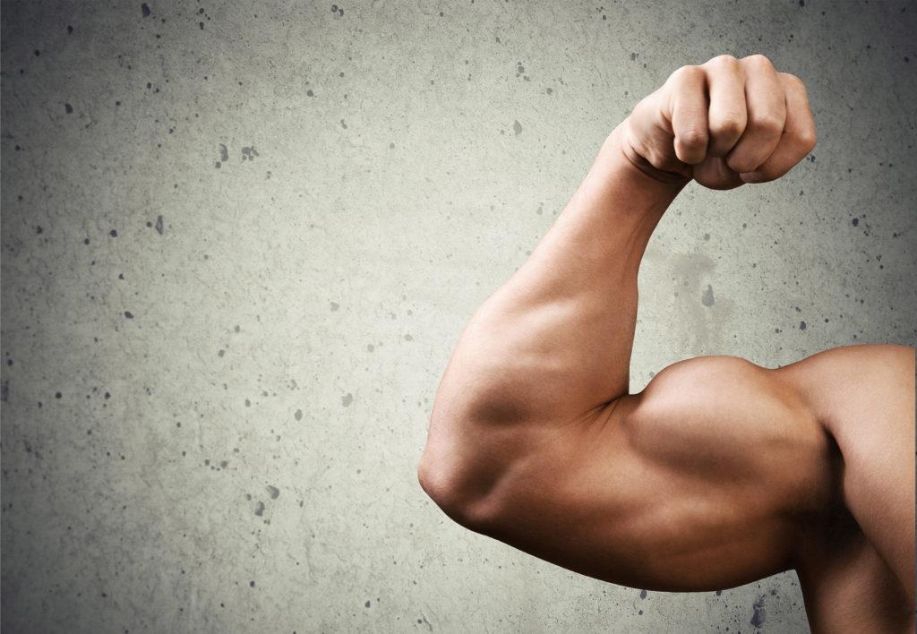 Trainen met Wiet – Wiet en Bodybuilding - Weed Seed Shop
