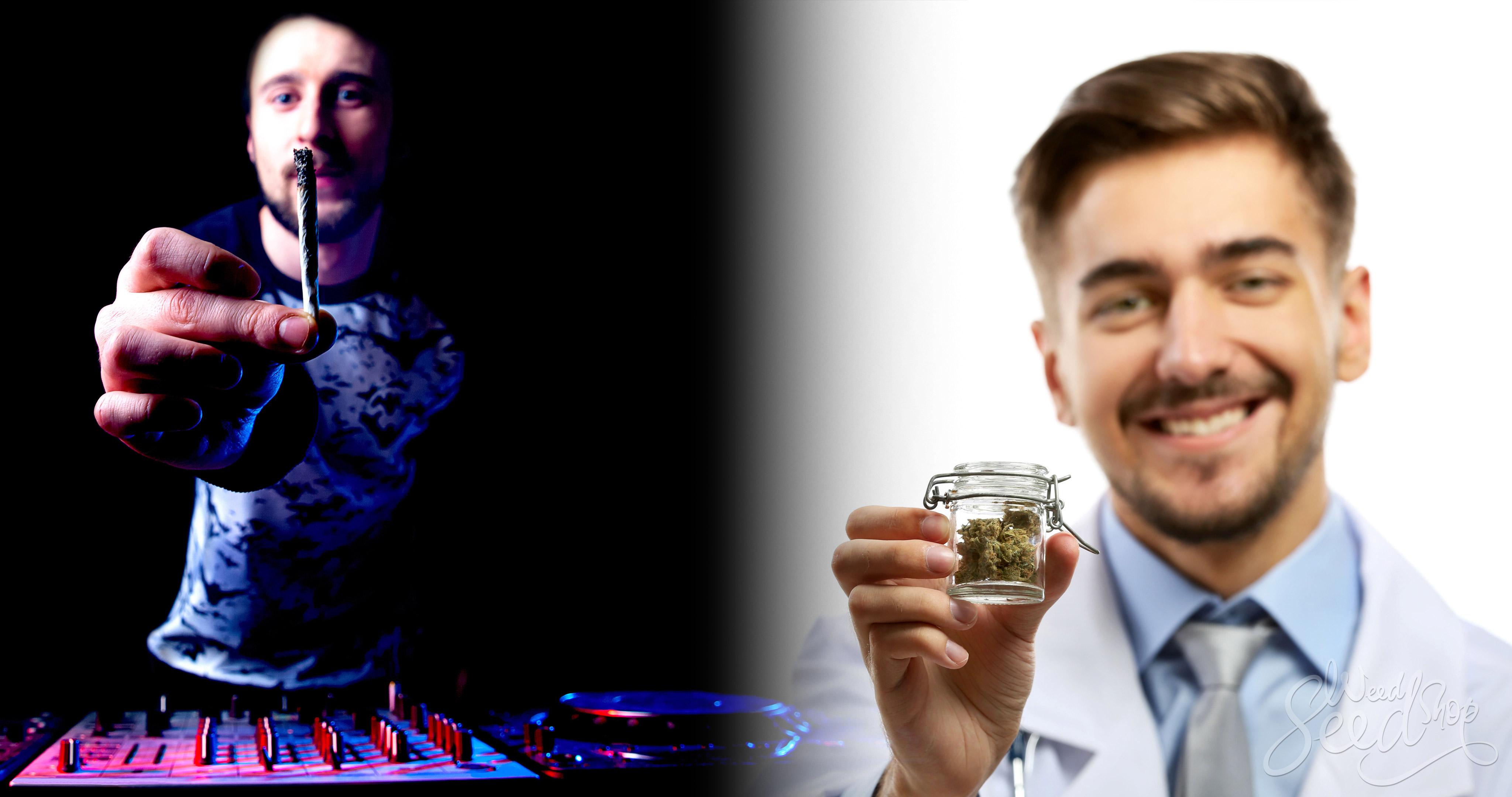 Marihuana recreativa vs medicinal – ¿Cuál es la diferencia? WeedSeedShop Blog