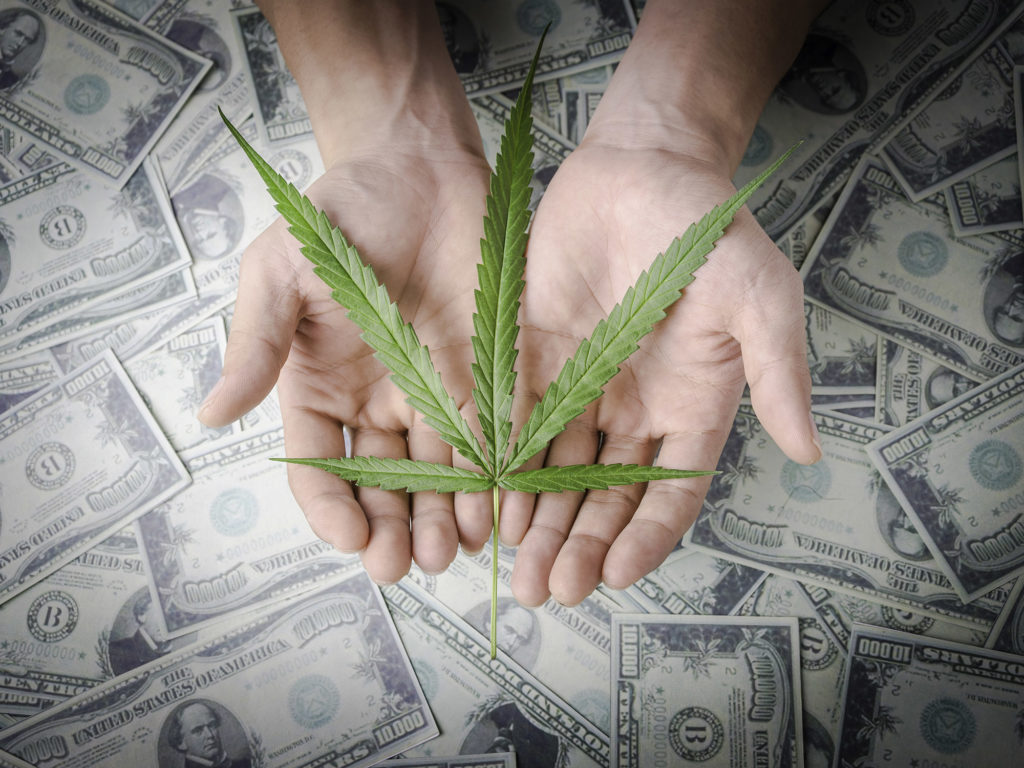 Die Kollision zwischen legalem Marihuana und US Angestellten - Weed Seed Shop Blog