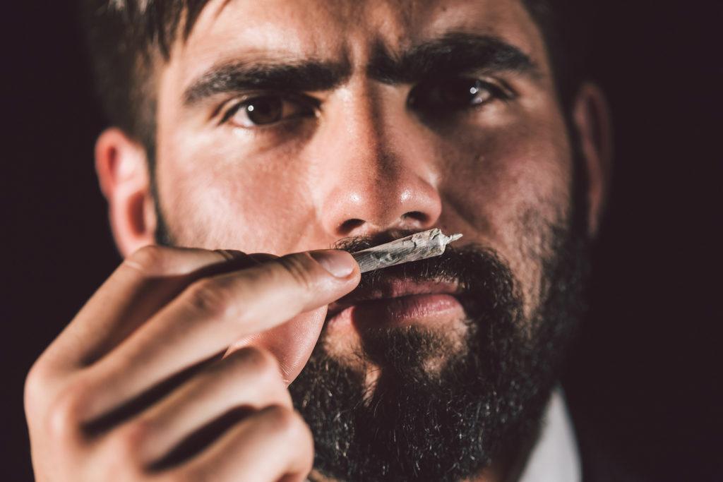 ¿Cómo saber si tu marihuana se dañó? – Weed Seed Shop Blog