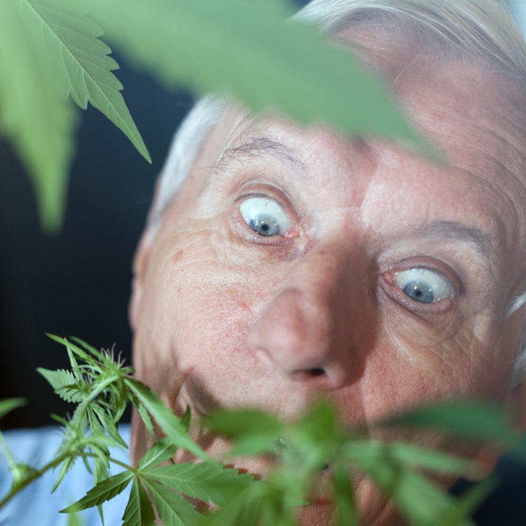 Cómo fumar marihuana sin ponerte nervioso - WeedSeedShop